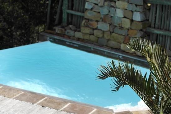 Tsala Treetop Lodge: infinity pool