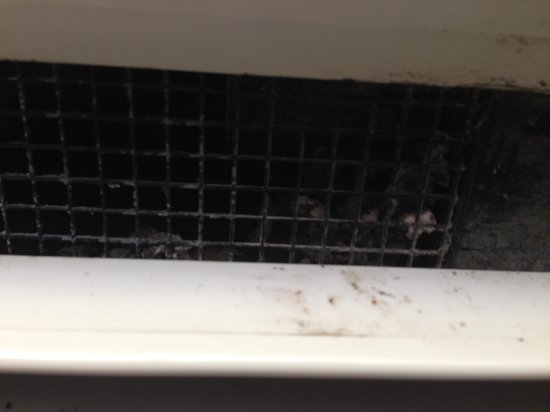 Comfort Inn & Suites : AC vent with Mold