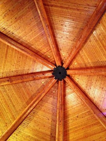 Spearfish Canyon Lodge : lobby roof