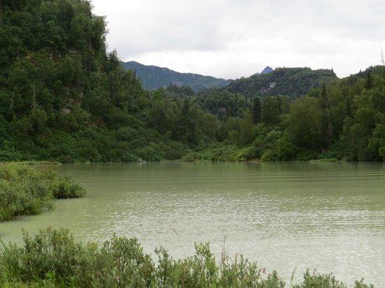 Talon Air Service: Lake where we landed