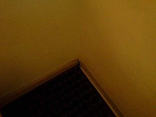 Rodeway Inn & Suites : Hole in the corner wall