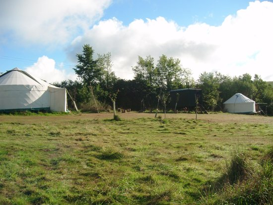 Mill Valley Yurts: Other Yurts
