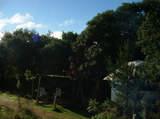 Mill Valley Yurts: Acorn Yurt - in the sun