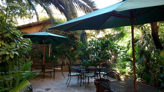 فندق فيلا دل روز: Jardin del hotel