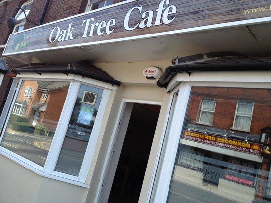 Oak Tree Mobile: oak tree cafe