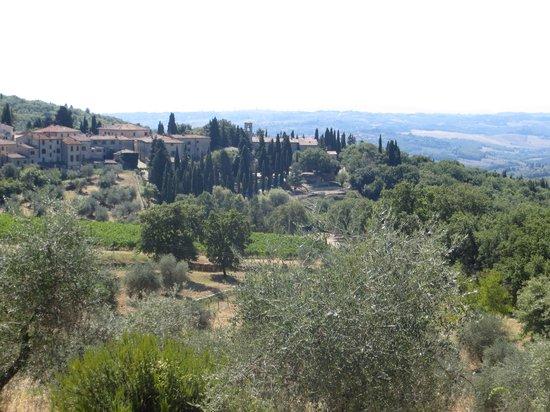 I Bike Tuscany : Chianti region