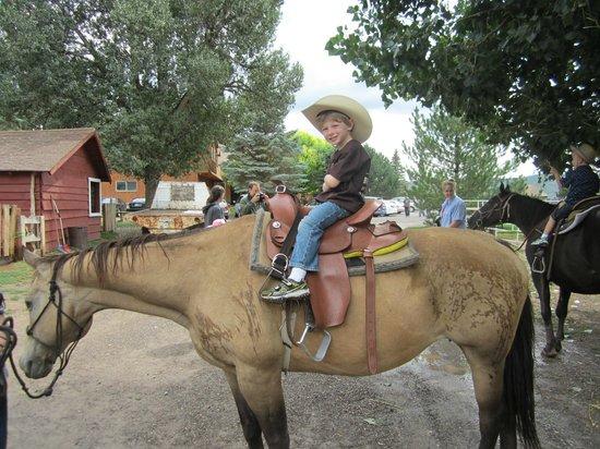 Rockin R Ranch: Children's Horseback Riding
