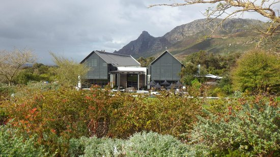 Steenberg Hotel : Winery