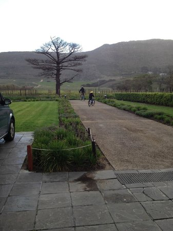 Steenberg Hotel : Biking on the property