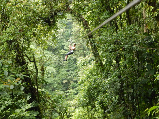 Arenal Canopy Adventure (ATHICA Canopy Tour): Athica Canopy--good times