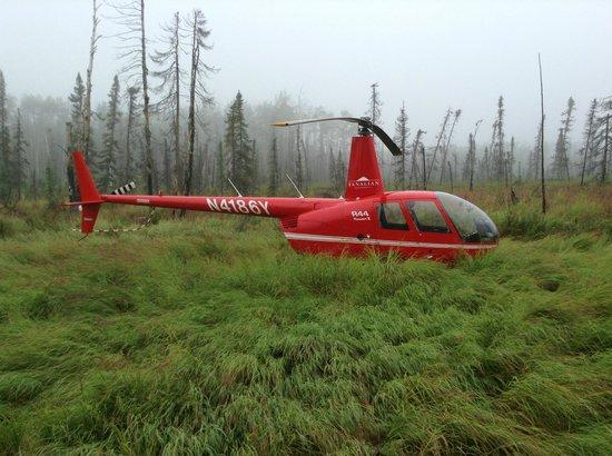Tanalian Aviation, Inc: Near McGrath