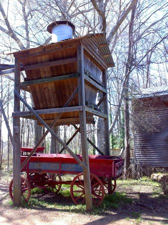 Mississippi Agricultural & Forestry Museum: Coś