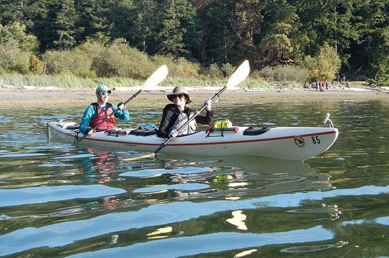 Outdoor Odysseys: Paddling in Reid Harbor, Stuart Island