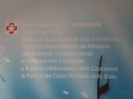 Riccione, Italia: la storia