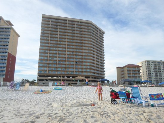 Seawind Condominiums: View from the beach