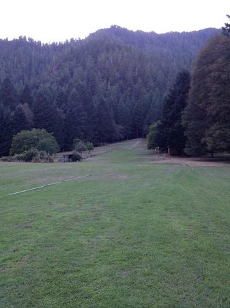 Paradise Lodge: Huge grassy area
