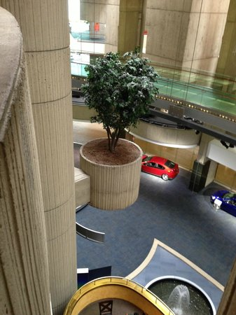Detroit Marriott at the Renaissance Center: Mysterious Cantilevered pod with Silk Ficus