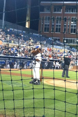 Durham Bulls Athletic Park: View of Wool-E-Bull Behind Home Plate