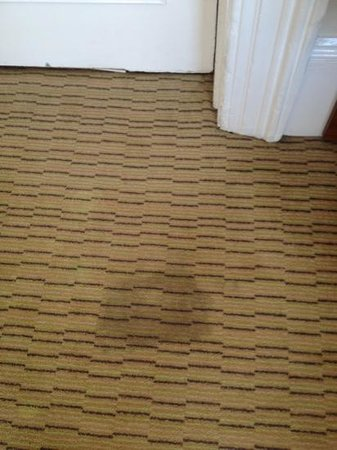 Mercure Brighton Seafront Hotel : carpet stains
