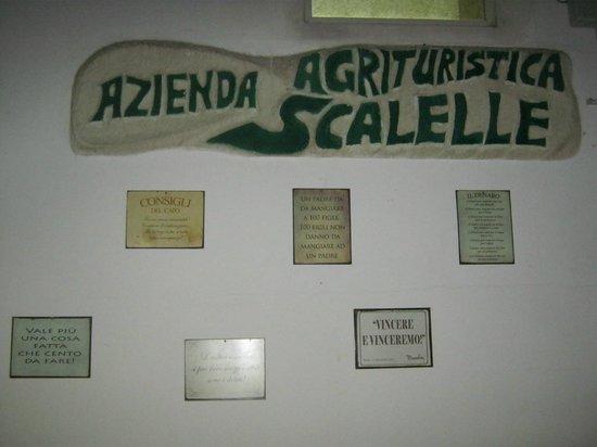 Azienda Agrituristica Scalelle: dicitura dell'azienda