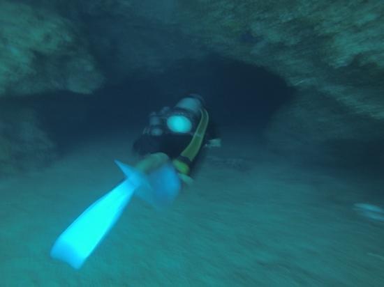 Scuba Diving Adventures: Entering a cave...sorry so blurry