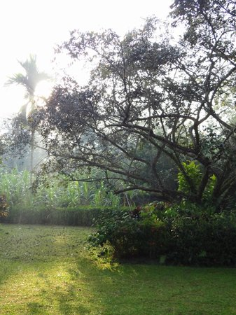 Satwa Elephant Eco Lodge : Lovely and peaceful garden/grounds
