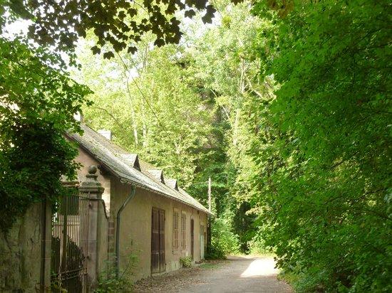 Parc du Château de Pourtalès : au détour d'un chemin