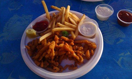 Harbor Fish Cafe: Clam strip plate, extra tartar sauce