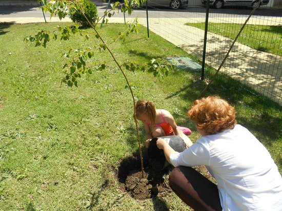 Sol Nessebar Bay: planting a tree on the hotel grounds