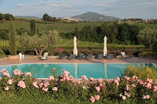 Tenuta Cusmano: The pool, with Castelgandolfo behind