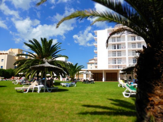 Hotel Gran Sol: The grassy sunbathing area