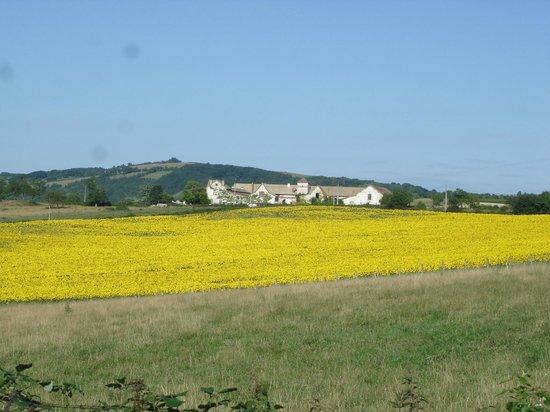 Saint-Ythaire, France: Morlay au loin derrière les tournesols