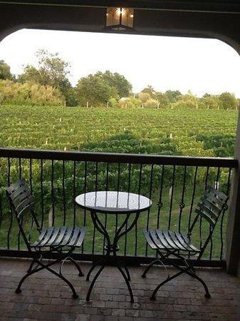 Sannino Vineyard B and B: The view from our balcony!