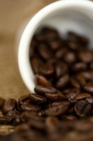 Auberge du Littoral: Trucillo high quality espresso coffee