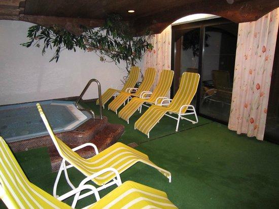 Hotel Almhof Danler: spa