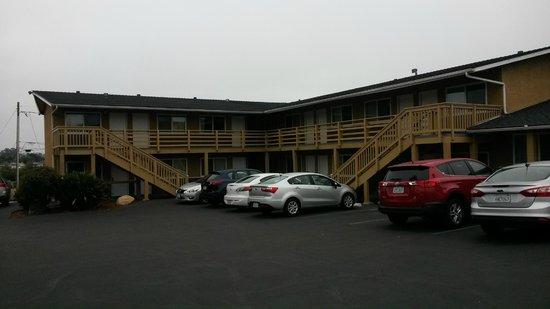 Ocean Palms Motel: Hotel