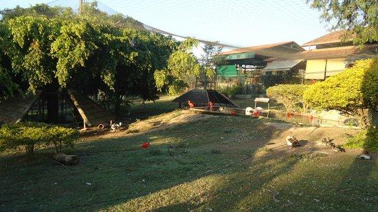 Alambique & Parque Ecologico Vale Verde: Vale verde