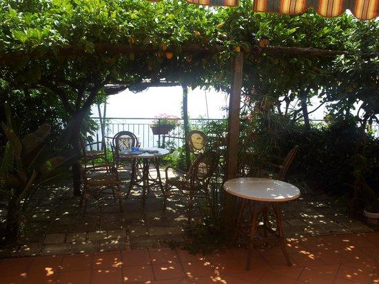 Ravello Rooms: The lemon grove terrace