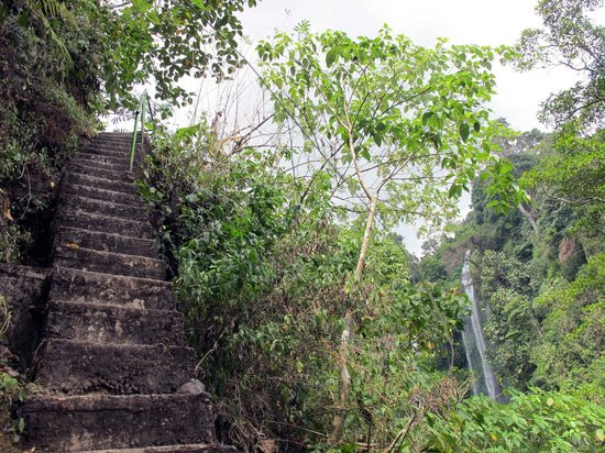 Singaraja, Indonésie : Sekumpul Falls_The 350 steps to the river