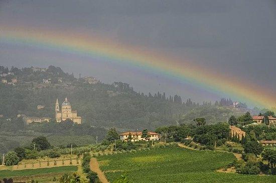 Agriturismo Villa Mazzi: San Biagio from Villa Mazzi