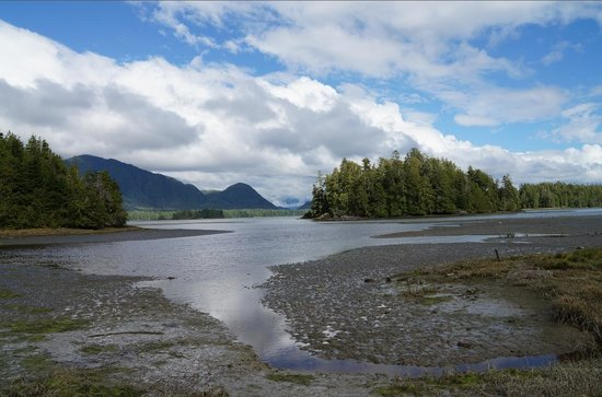Jamie's Rainforest Inn: Mud flats are only a few steps away.
