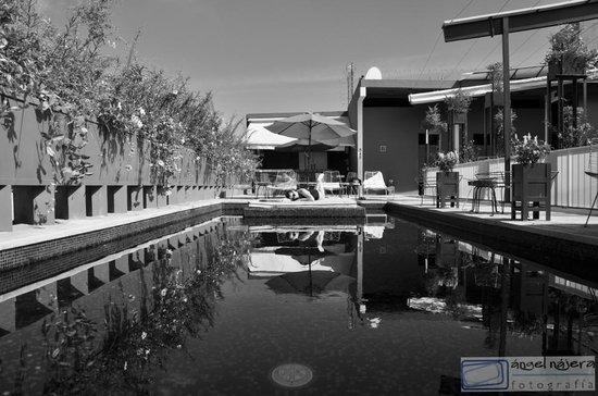 Flor de Mayo Hotel and Restaurant : Increíble alberca con área de asoleo!