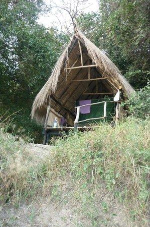 Jungle Junction: The fisherman's hut
