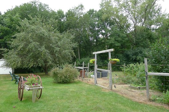 Bowman's Oak Hill Bed & Breakfast : View to the garden