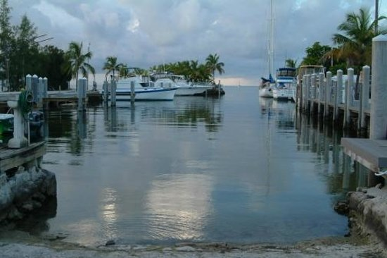 Blackfin Resort and Marina : Quiet marina