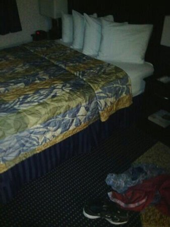 Quality Inn Floral Park: the bed