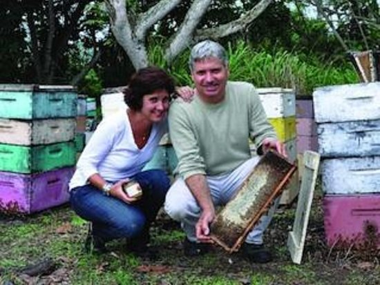 Big Island Bees: Honey tasting and beekeeping museum