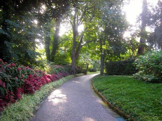 Hotel La Residenza : Uno scorcio del giardino
