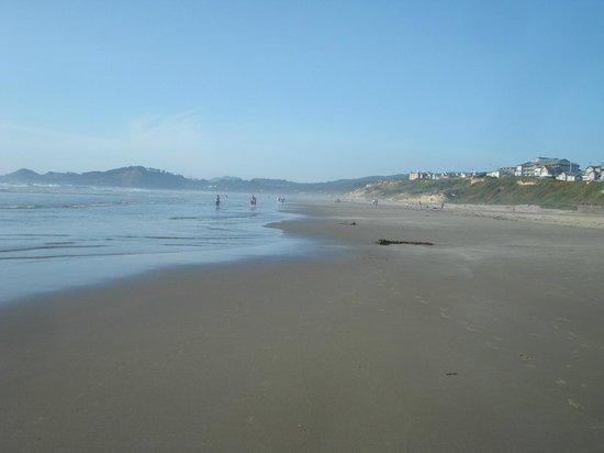 Beach close to the Whaler