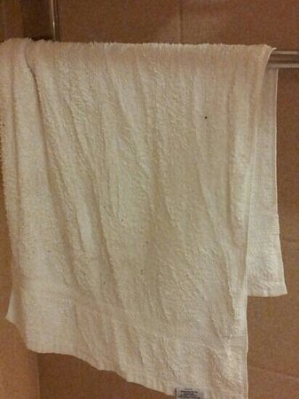 Comfort Suites: dirty used towel